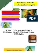 Contabilidad-Ambiental (1)