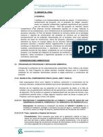 10.CAP VII PLAN DE MANEJO AMBIENTAL.pdf