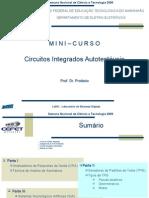 Mini_Curso_CI_Autotest%C3%A1vel_2006[1]
