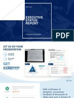 Executive Status Report-corporate