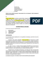 Modelo_INFORME_PERICIAL (3).docx