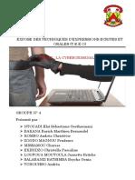 cybercriminalité ACIE2