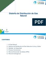 Sistema de Distribución de Gas Natural