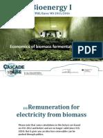 Bioenergy_Economic.pdf