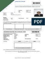 PDF Ficha Docente