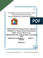 UNIVERSIDAD NACIONAL DEL ALTIPLANO nutricion.docx