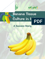 Banana_Tissue_Culture-Success_Story_29-11-2019_For_Circulation
