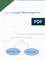 Lo Sviluppo Metacognitivo