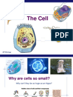 AP Lecture_The_Cell (1)