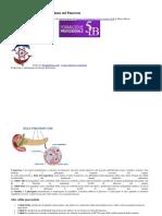 399631561-Cellule-Alfa-e-Beta-di-Langerhans-nel-Pancreas-docx.docx