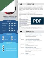 Ammar_Muzaffar.pdf