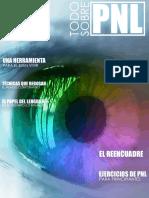 Todo Sobre PNL (Revista) - Varios Autores
