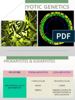 10._Introduction_to_Prokaryotic_genetics-_transformation.pptx