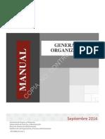 Manual gral de organización