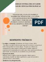 MANEJO DE CULPA EN PADRES Y MADRES DE NIÑOS/AS DE 1 A 11 AÑOS, CON QUEMADURAS DE PRIMERO, SEGUNDO Y TERCER GRADO QUE FUERON O ESTAN SIENDO ATENDIDOS EN EL HOSPITAL PEDIATRICO BACA ORTIZ