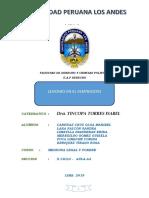 TRABAJO MONOGRAFICO MLF - TRABAJO GRUPAL.pdf