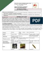 Guía Los Animales Invertebrados y Vertebrados