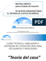 Teoría del Caso.pdf