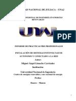 informe de carrizales 2017 (1).docx