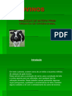 BOVINOS, 2006.pdf
