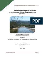 03_Hidrología_Bosques_Texto_Sampurno.pdf