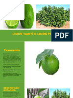 diapositivaslimontahiti-150922163049-lva1-app6891.pdf