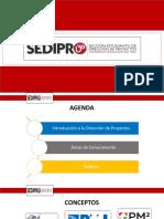 Conceptos_Dirección_de_Proyectos.pdf