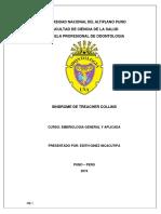 GINEZ INCACUTIPA EDITH .pdf