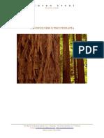 Mindfulness_e_psicoterapia.pdf