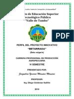 Proyecto Innovativo Betarraga
