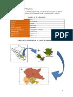 PIP Yuca.pdf