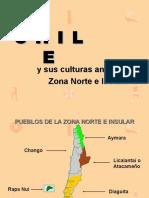 pueblos-originarios-de-chile-zona-norte-130403204549-phpapp02 (1).pdf