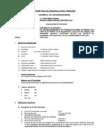 Informe Final de Desarrollo Físico Financiero NUE.doc
