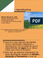 2 Fenología reproductiva.ppt