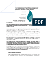 COMPOCISIÓN DE GAS.docx