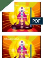 Pratica Da Canção de Lotus