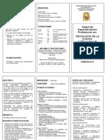 triptico convocatoria 2014.doc