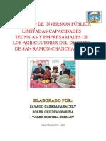 Proyecto de Inversion Publico