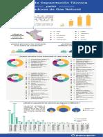 Estadisticas-Centros-Capacitacion-Tecnica-IGN-may-2019.pdf