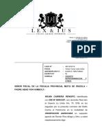 apersonamiento caso 429-2019-0.docx