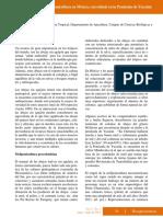 Importancia de la Meliponicultura en Mexico.pdf