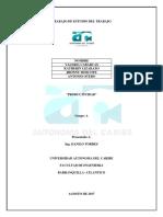 ESTUDIO DE TRABAJO.docx