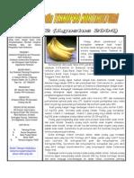 Buletin Teknopro - Pisang (8)