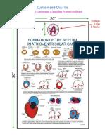 Embryo-List-2018.pdf