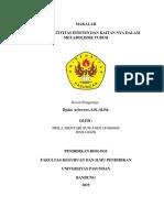 PRILA MENTARI S 185040088(FISIKA)