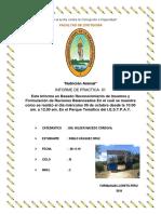 IMFORME 1 PABLO.docx