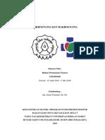 MAKALAH drg. Sandy - Micronaghtia Macrognathia