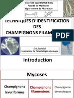 Techniques-d_Identification-des-champignons-filamenteux