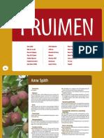 7 Fruitwijzer Pruimen Tcm7 119878