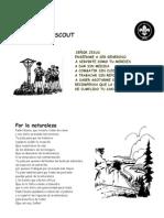 Oracion Scout
